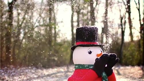 snowman snowfall machine