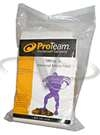 Proteam Everest Paper Bag 10 Pack Hummer XL 103191