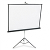 Quartet Portable Tripod Projection Screen, 60 x 60, Whi