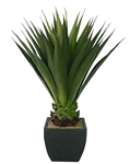 Laura Ashley 43 Inch Tall High End Realistic Silk Giant Aloe Plant with Contemporary Planter