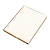 Wilson Jones Looseleaf Minute Book Ledger Sheets, Ivory