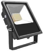 Bright 1000 BEFL050-MT-60 50W LED Flood Light, 6000K