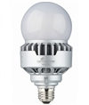 LED-8017E50-G2 5000K A21 LED Light