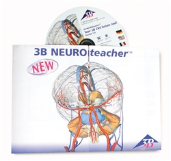 3B NEUROteacher, Single User License