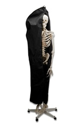Heavy Duty Dust Cover for Skeletons
