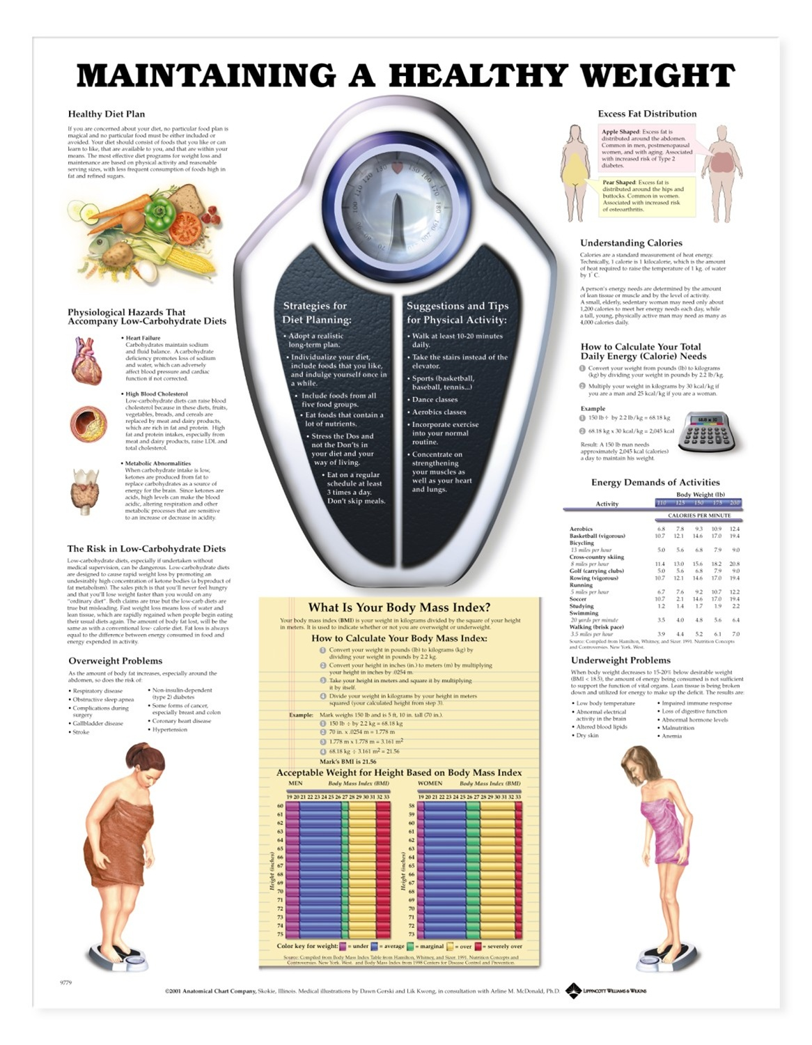Communication on this topic: How to Maintain a Healthy Weight, how-to-maintain-a-healthy-weight/