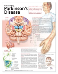 Understanding Parkinson's Disease Anatomical Chart, 2nd Edition