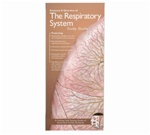 Respiratory System and Disorders Pocket Study Guide - 2nd Edition
