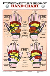 Hand Reflexology Anatomical Chart
