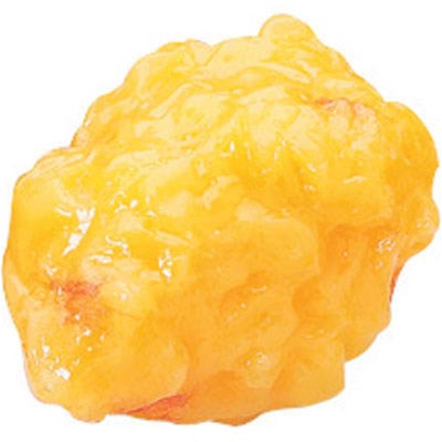 One Pound (1 lb) Fat Replica - Anatomy Models and Anatomical Charts
