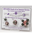 HIV/AIDS: Death of an ImmuneSystem Easel Display