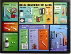 Drug Identification Guide