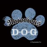 notorious d.o.g dog tee