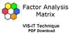 The VIS-IT™ Factor Analysis Matrix Technique