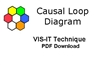 The VIS-IT™ Causal Loop Diagram Technique