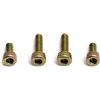 Associated 3mm Motor Mounting Screws (4)