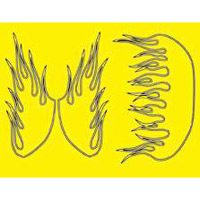 Parma Paint Masks-Outlined Flames