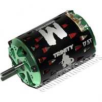 Team Epic  Monster Horsepower 17.5T Brushless Stock Motor
