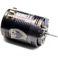Team Epic D4 25.5 Turn Brushless Motor