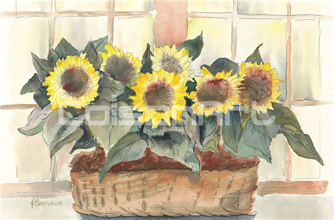 Anthony Bertuglia Basket of Sunshine