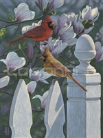 Cardinals and Magnolias by Jeffrey Hoff