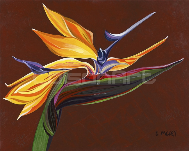 Bird of Paradise 2 by Earle McKey