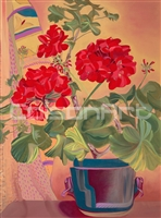 Geraniums by Earle McKey