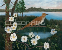 Nadine Robinson Georgia Bird - Brown Thrasher,  Flower - Cherokee Rose