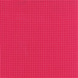 Best Day Ever Raspberry Graph Paper Yardage