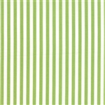 Prairie Green Stripe Yardage