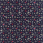 25th and Pine Midnight Nutcracker Court Yardage