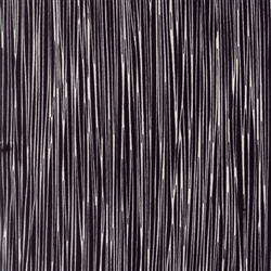 Thicket Black on Natural Stripes Yardage