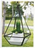 Geometric Glass Terrarium, Raised Pyramid