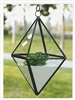 Geometric Glass Terrarium, Hanging Diamond