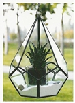 Geometric Glass Terrarium, Hanging Teardrop