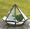 Geometric Glass Terrarium, Diamond-Faceted