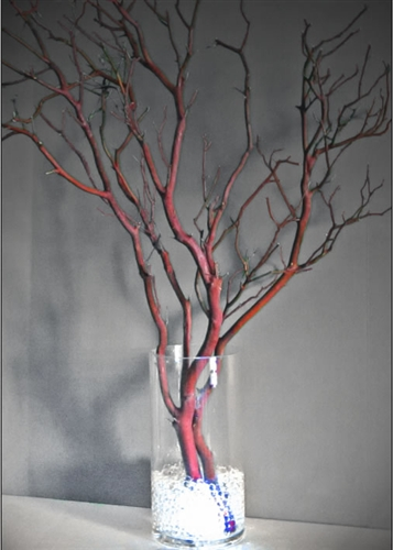 Lighted Manzanita Centerpiece Kit Shipping Included