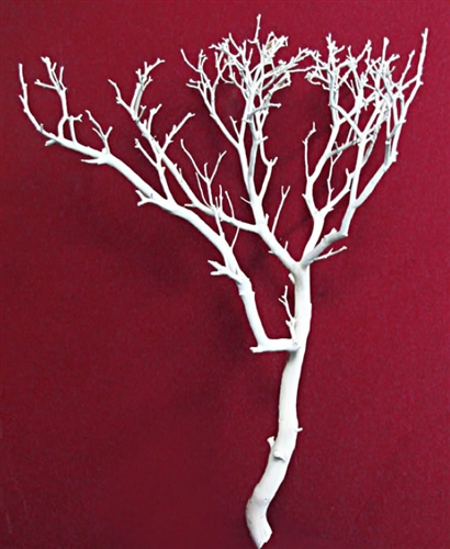 White Manzanita Branches 24 Tall