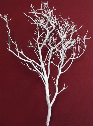 White Manzanita Branches 30 Tall