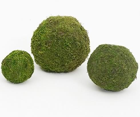 Moss Ball 6 Inch