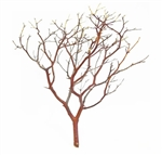 "Natural Red Manzanita Branches, 14"" Tall"