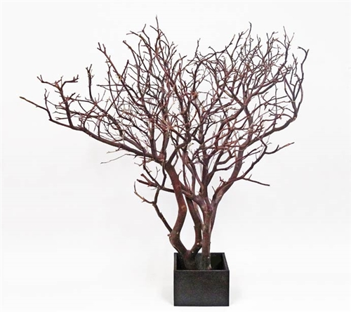 "Super-Wide Manzanita Centerpiece, 30"" Tall"
