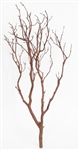 "Chaparral Manzanita Branches, 18"" Tall"