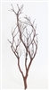 "Chaparral Manzanita Branches, 24"" Tall"
