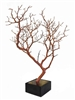 "Two Manzanita Branches 24"" Tall with Bases, (Shipping Included!)"