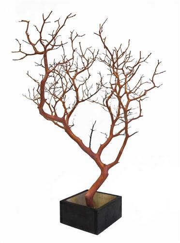 Natural Red Manzanita Branches 24 Quot Tall With Base