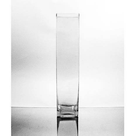 The Vase Place Glass Vases