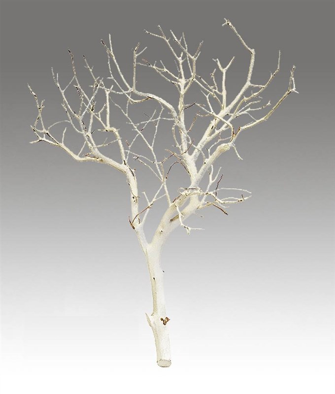Sandblasted Manzanita Centerpiece Branches 18 Inches Tall Blooms