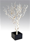 "Two Sandblasted Manzanita Branches 24"" Tall with Bases, (Shipping Included!)"