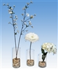Cylinder Vase Centerpiece Kit, 4 Pieces